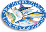 port vila fishing tours are run under igfa regs