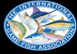 port vila fishing tours are run under igfa regs